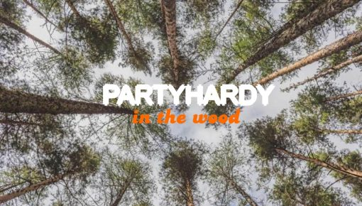 PARTYHARDY in the wood